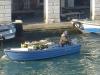 Barque de maraîcher