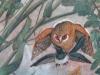 grimani-plafond-oiseaux-3