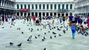 Règles de comportement à Venise