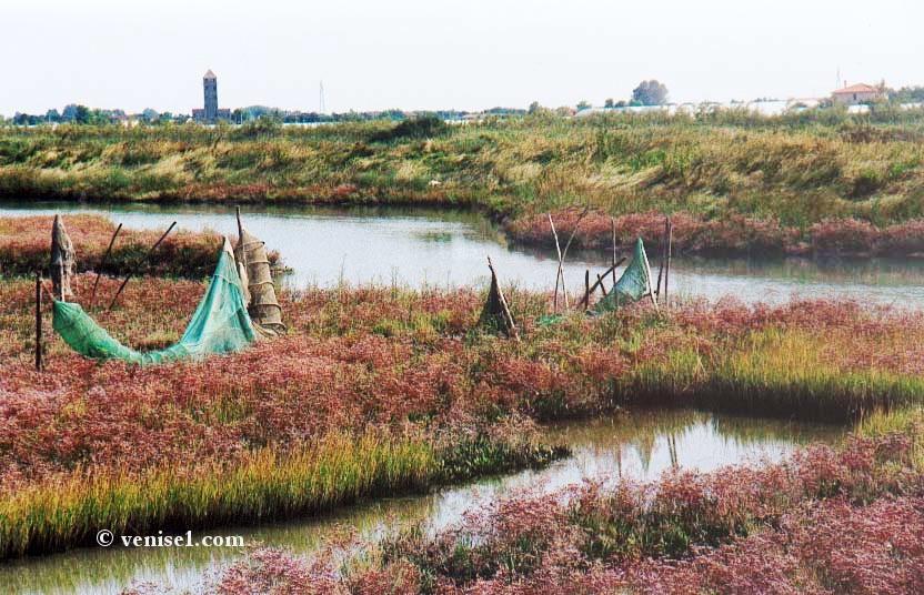 Lagune de Venise îles de la lagune vénitienne