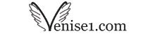 Venise par venise1.com officiel