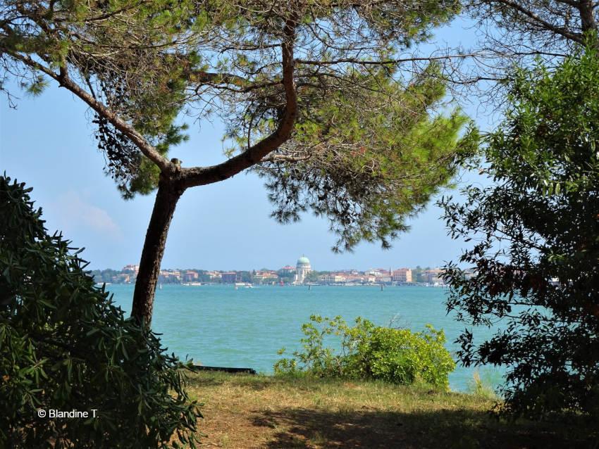 parc de sant Elena à Venise