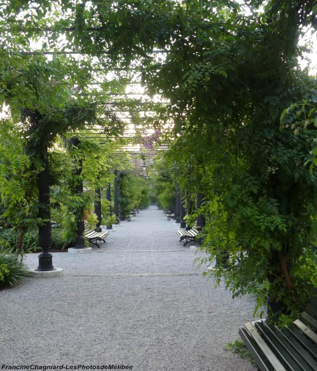 Giardini reali de Venise, les jardins royaux
