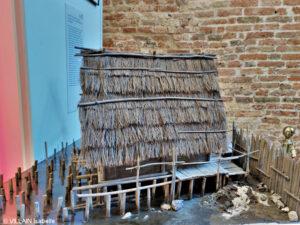 Vivere tra terra e acqua : dalle palafitte preistoriche a Venezia.